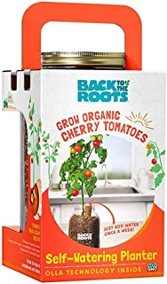 Back to the Roots Organic Cherry Tomato Self Watering Planter, Grow Cherry Tomatoes Year Round, Windowsill Indoor Garden Kit