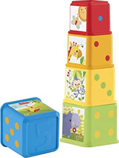 Fisher-Price CDC52 Stack & Explore Blocks, Set of 5