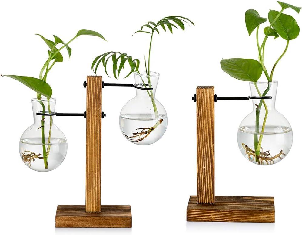 2Pcs Glass Bud Vase with Wooden Stand, Creative Single Heart Glass Hydroponic Vases, Modern Plant Propagation Station Desktop Planter Bulb Vase for Home Garden Office Decoration(3 Bulb Vases)