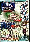 Los 5 Grandes De Guerrero Y Michoacan Vol.1 (Varios Artistas En Vivo ARDVD-006)