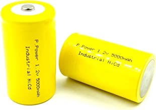 D Rechargeable Battery
