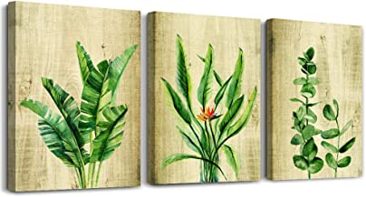 """Canvas Wall Art for Kitchen Simple Life Green Plants Wall Decor for Bedroom Artwork 12"""" x 12"""" 4 Pieces Framed Ready to Han..."""