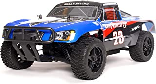 exceed rc rally monster brushless