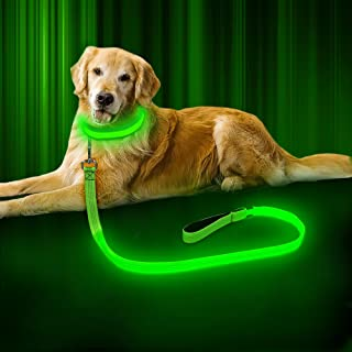 BSEEN LED Dog Leash - USB Rechargeable 47.2 inch 120 cm Reflective Night Safety Pet Leash LED Strip to Keep You and Your Dog Safe