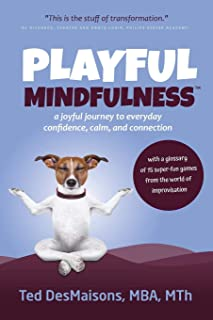 Playful Mindfulness: a joyful journey to everyday confidence, calm, and connection