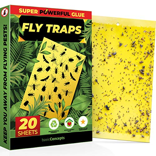 Fruit Fly Trap (20 Pack), Double-Sided Yellow Sticky Traps (Indoor &...