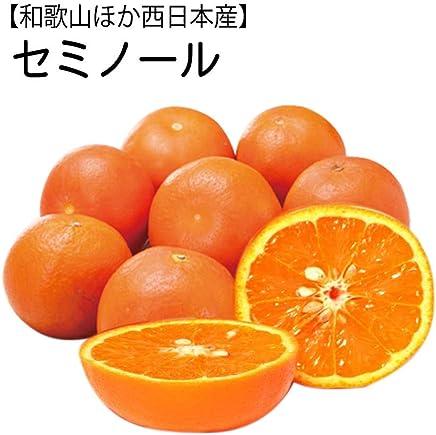 【和歌山ほか西日本産】セミノール 約9~10kg 大きさおまかせ オレンジ/有田/みかん