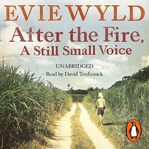 Couverture de After the Fire, a Still Small Voice