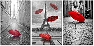Best black and white paris pictures Reviews