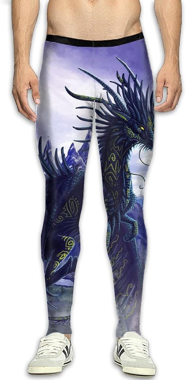 Dfdffrfrwqq Purple Dragon Pattern Men's Active Basic Athletic Skinny Track Pants