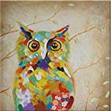 Wall Arts 100% Hand Painted Animal Oil Painting Colorful Owl Canvas Art with Stretched Frame on Canvas Wall Art for Home Decor Ready to Hang 12x12inch