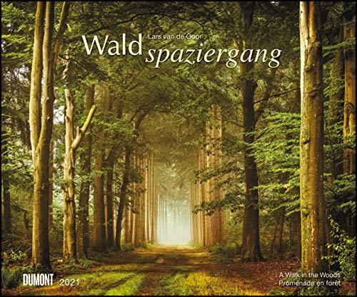 Waldspaziergang 2021 – Fotokunst-Kalender – Querformat 58,4 x 48,5 cm – Spiralbindung