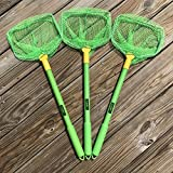 ILLUMINET 3 Pack Floating Bait Nets Green: No Assembly Required Kids Beach Nets, Beach Toys for Kids, Kid Fishing Nets, Butterfly Net, Beach Toy, Shelling Net, Dip Net, Crab Net, Critter Net, Fish Net
