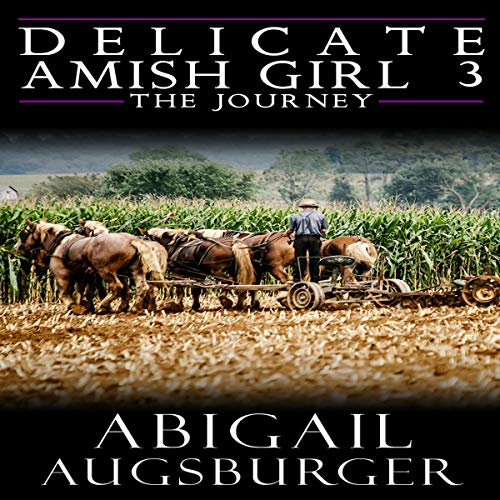 The Delicate Amish Girl 3  By  cover art