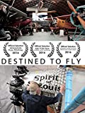 Destined To Fly