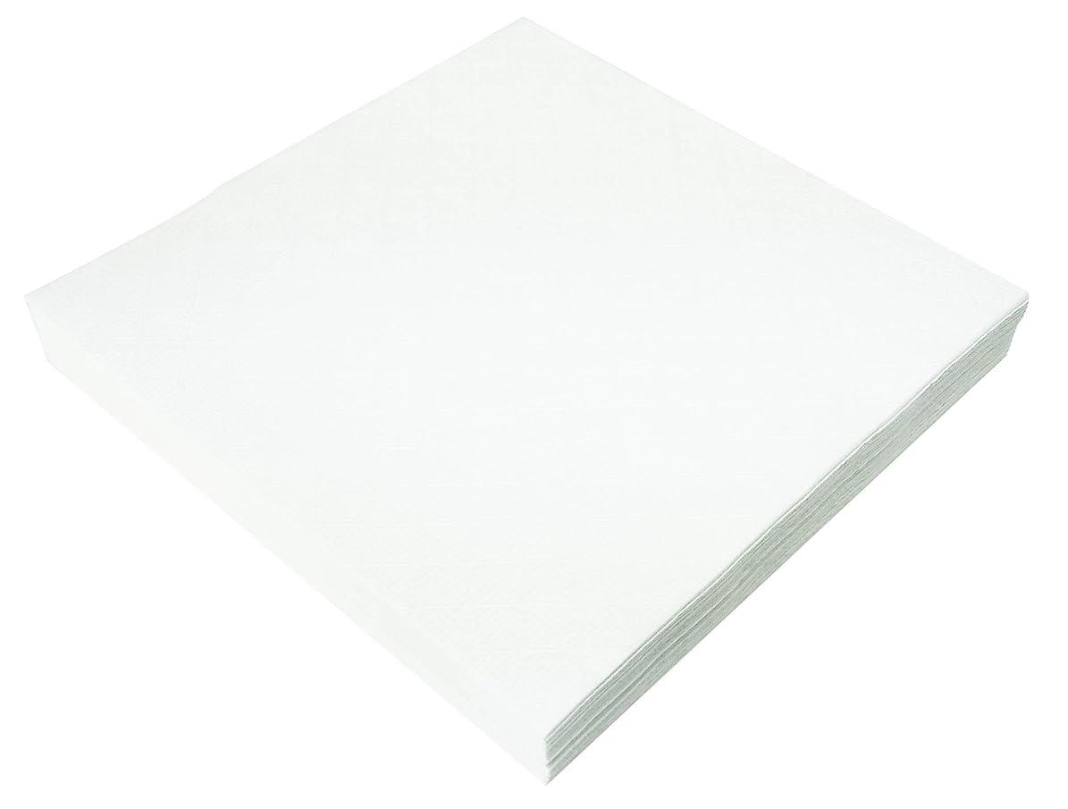 くびれたプラカードスクリーチ大黒工業 『業務用』  ナプキン紙 白平判 角型 25.4×25.4cm 1000枚