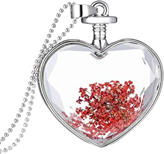 Platinum Plated DIY Dried Flower Heart Lockets Pendant Chain Necklace Jewelry Gift
