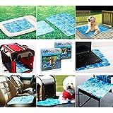Kühlmatte für Hunde Hundedecke All for Paws Chill Out Always Cool L 90×60 cm - 6