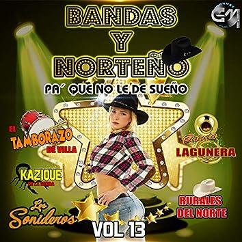 Bandas Y Norteño, Vol 13