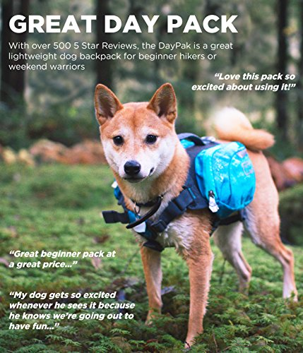 Outward Hound DayPak Dog Backpack, Blue