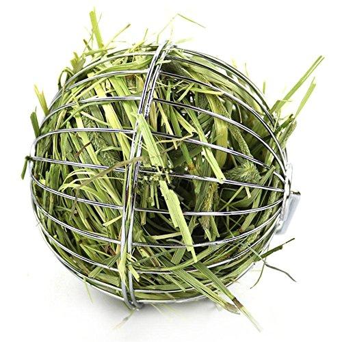 househome Hay Ball, Esfera Redonda Que cuelga la Bola del heno Bola dispensadora de Alimentos de Acero Inoxidable para Hamster Rat Rabbit Guinea Pigs Pet