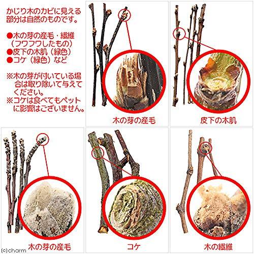 リーフ『BISTROUSAYAMA長野県小布施産りんごの木極細枝』