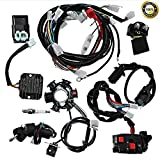 Complete electrics all wiring harness wire loom assembly for GY6 4-Stroke Engine...