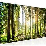 Quadro Foresta paesaggio Stampa D'Arte Tela Non Tessuta Decorazione Murale Soggiorno Camera Da Letto 503856b