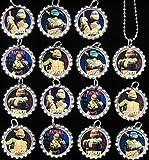 15 TEENAGE MUTANT NINJA TURTLE Flat Bottle Cap Necklaces for Birthday, Party Favor