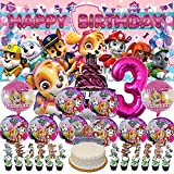 Paw Patrol Girl Plates 3rd Party Supplies Decorations 3...