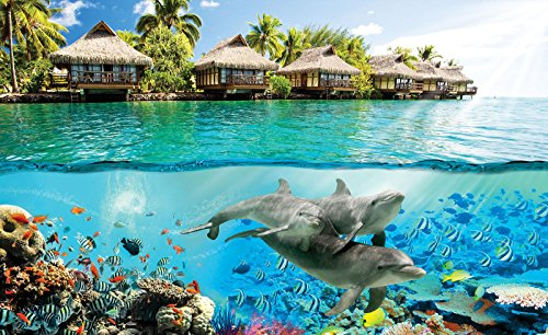 Welt-der-Träume Fototapete Tapete Wandbild Hawaii Delphine   P4 (254cm. x 184cm.)   Photo Wallpaper Mural 3193P4-MS   Hawaii Delphin Wasser Fisch Ozean Natura Haus