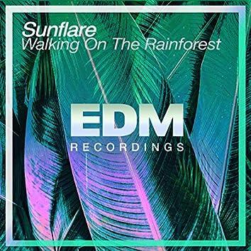 Walking On The Rainforest