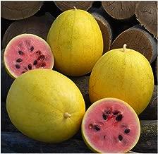 Best golden midget watermelon Reviews