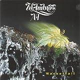 Songtexte von Wolfgang Ambros - Wasserfall