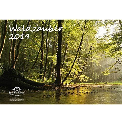 Waldzauber · DIN A3 · Premium Kalender 2019 · Wald · Bäume · Baum · Geschenk-Set mit 1 Grußkarte und 1 Weihnachtskarte · Edition Seelenzauber
