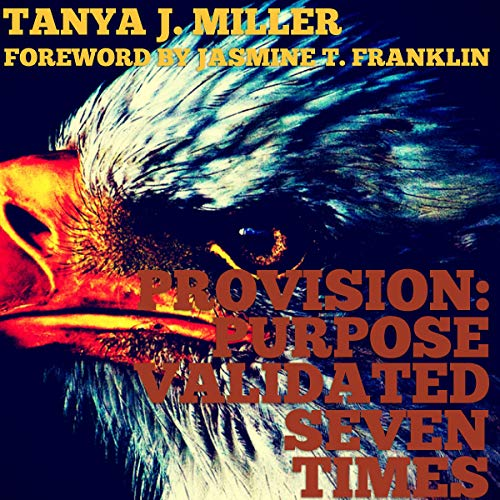 ProVision: Purpose Validated Times Seven audiobook cover art