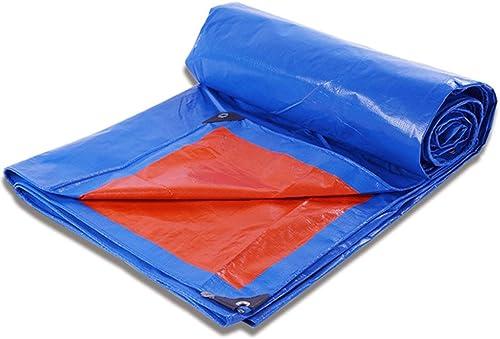 Duanguoyan Bache- Bache en Plastique de bache de PE de visière de bache de bache en Plastique à l'épreuve Rapide (Couleur   bleu, Taille   4X10m)