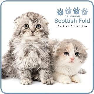 The CAT Mini Wall Calendar 2020 Scottish Fold