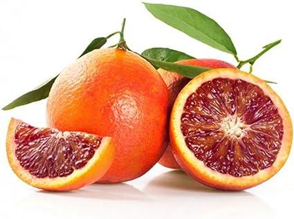 Arance rosse calabresi bio e non trattate 9kg B06XTSVH9V