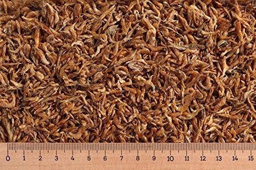 Futtertiere getrocknet 1 kg Shrimps 1-2 cm, Garnelen, Schildkrötenfutter, Reptilienfutter