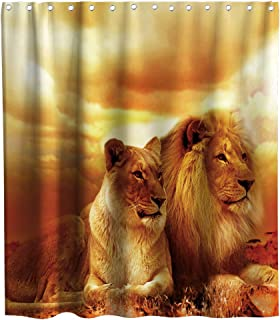 Final Friday African Lion Wildlife Animal Theme Fabric Shower Curtain Sets Bathroom Decor with Hooks Waterproof Washable 70 x 70 inches Gold Brown and Yellow