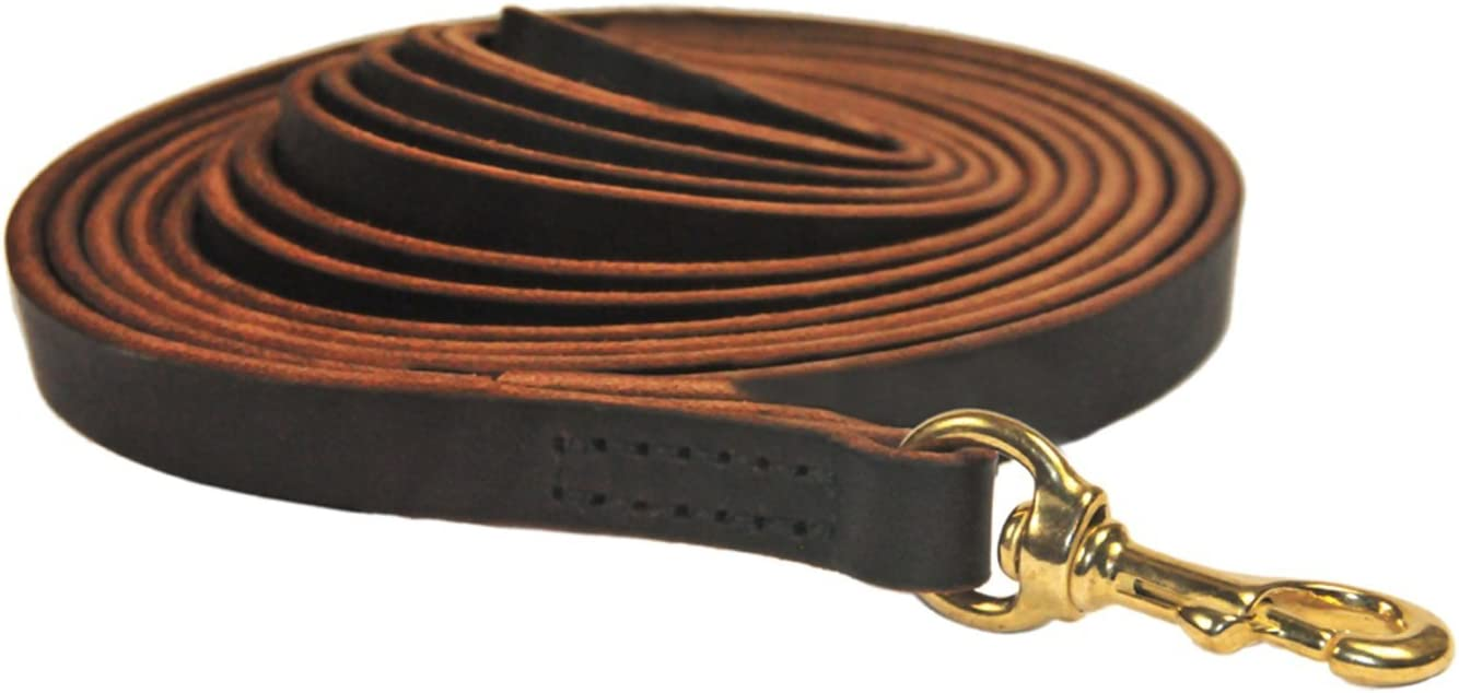 Dean and Tyler Stitched Track Dog 2-In Brown 50-Feet Al sold out. by 1 excellence Leash