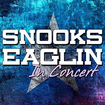Snooks Eaglin in Concert