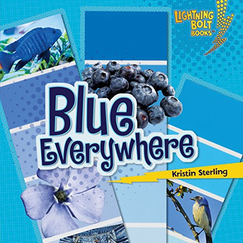 Blue Everywhere audiobook cover art