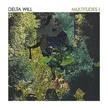 Multitudes I