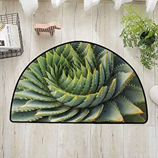 SONGDAYONE Breathable semi-Circular Door mat Cactus Botanic Spikey Wild Nature Inspired Western Dessert Plant Flower Artwork Image Print Playing on The Carpet Green W35 x L24
