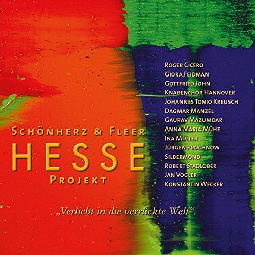 """""""Verliebt in die verrückte Welt"""" (Hesse Projekt 2) Titelbild"""