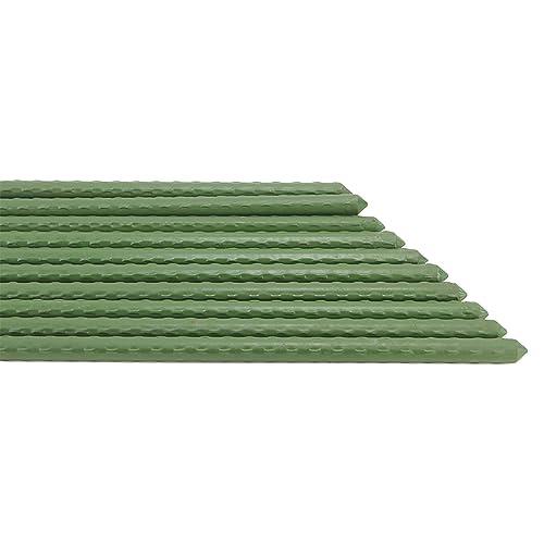 erozy 20 Pack, 0.3-Inch Diameter Bulk Green Coated Metal Heavy-Duty Sturdy Plant Stakes 2-Feet