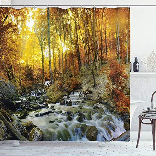 (180cm W By 180cm L, Multi 7) - Ambesonne Lake House Decor Collection, Autumn Time River Creek Forest Falling Leaves Rocks Trees Foliage Sunbeams Branches, Polyester Fabric Bathroom Shower Curtain Set with Hooks, Multi