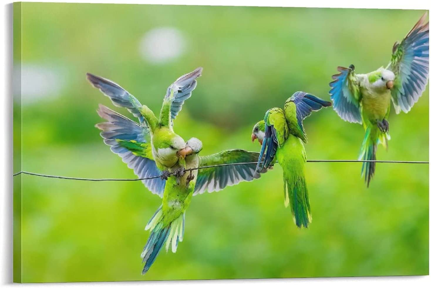 Bird on Wire Max 82% OFF Parrot Green Birds Choice Aestheti Room for Posters Canvas